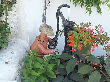 Flower pot man in Berrynarbor